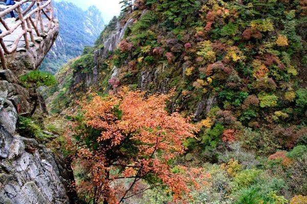 huangshan-view-7