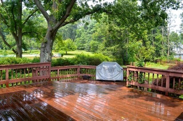 rainy-summer