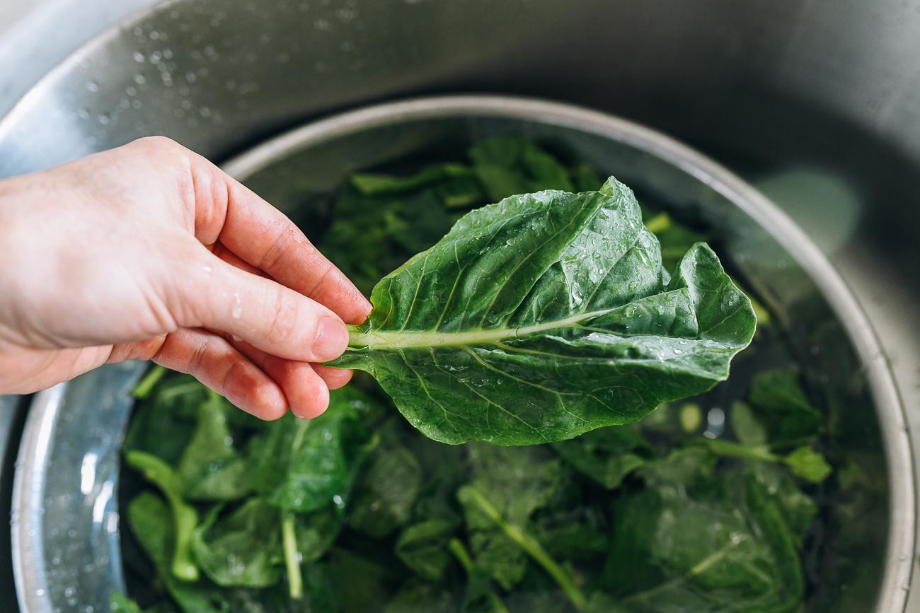 Chinese Broccoli Leaf