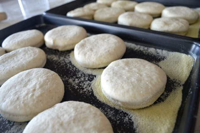 english-muffins-recipe-8