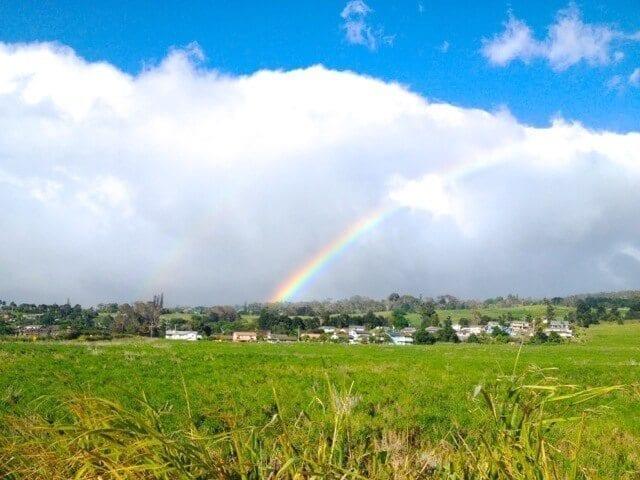 16 Reasons Why Hawaii is Pretttttty Much The Bomb - hawaii-rainbow, by thewoksoflife.com