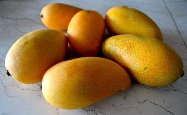 mango-pie-1
