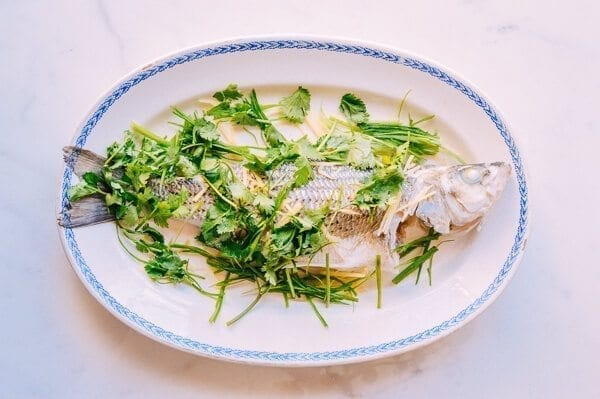 Steamed Whole Fish - Chinese Style, by thewoksoflife.com