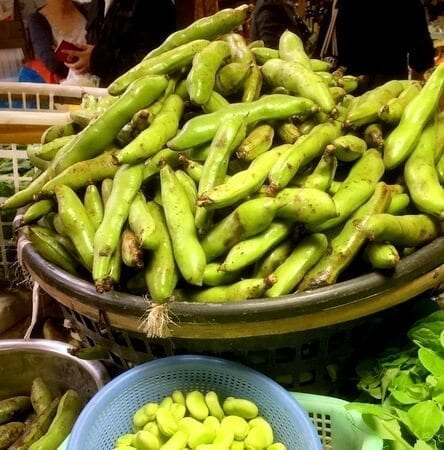 fava-beans-with-pod