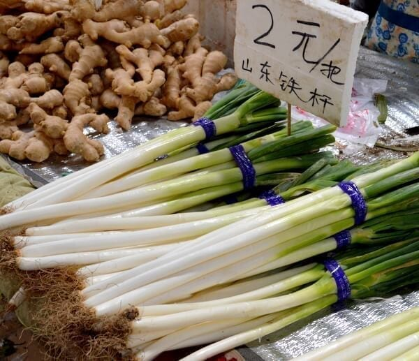 large-green-onion