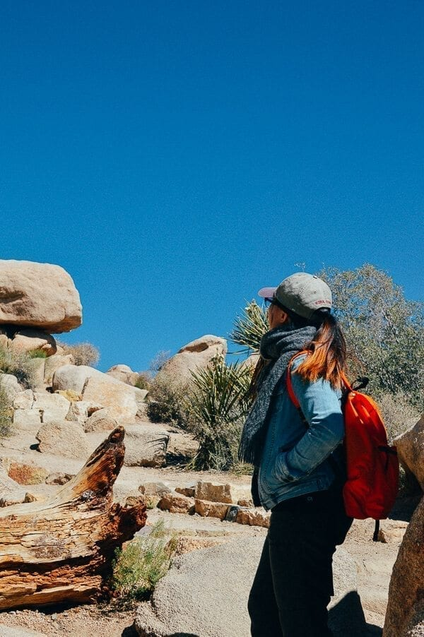 Joshua Tree Hiking