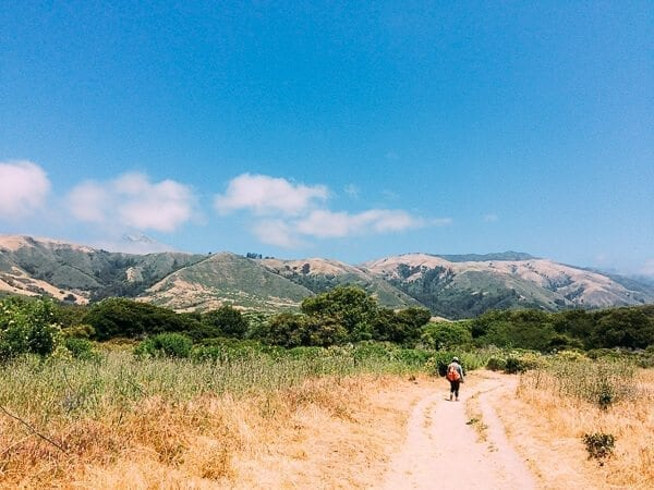 Andrew Molera State Park Trail, by thewoksoflife.com