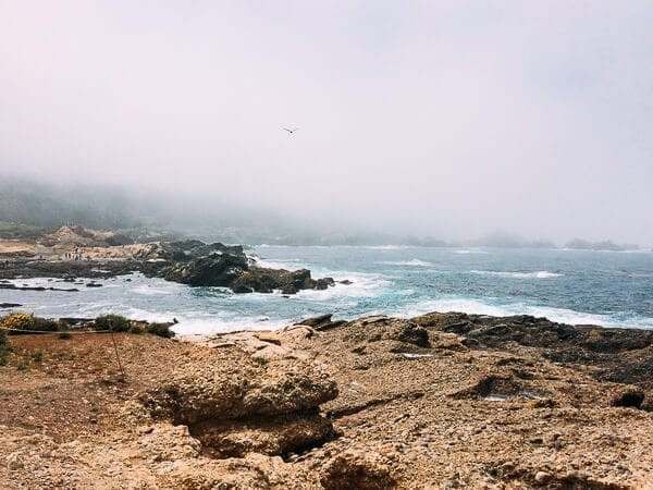 Point Lobos, by thewoksoflife.com