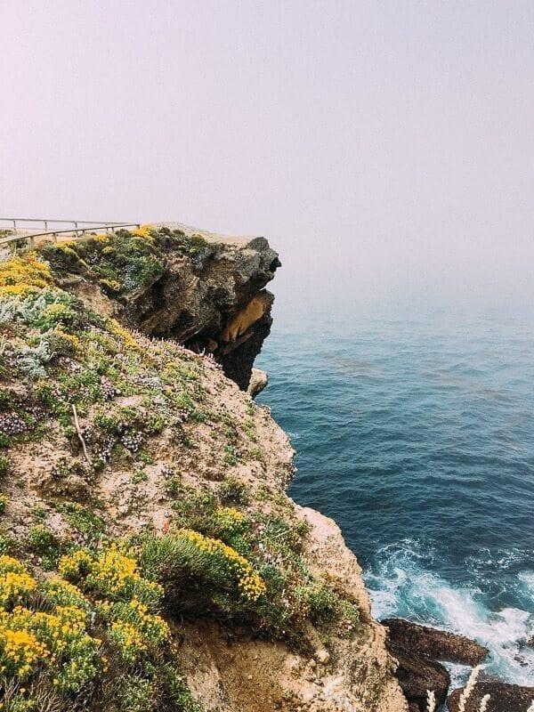 Point Lobos, by thewoksoflife.com
