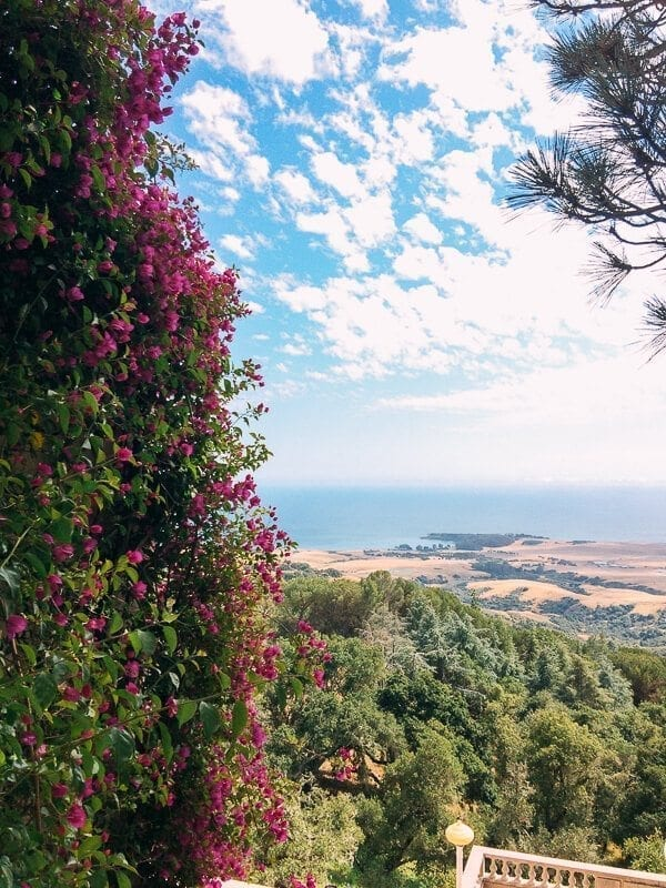 San Simeon, by thewoksoflife.com