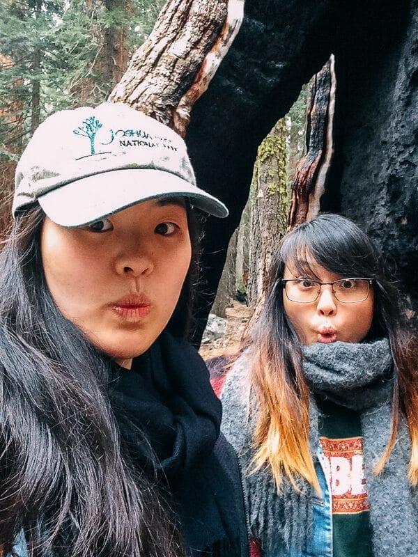 sequoia-national-park-19