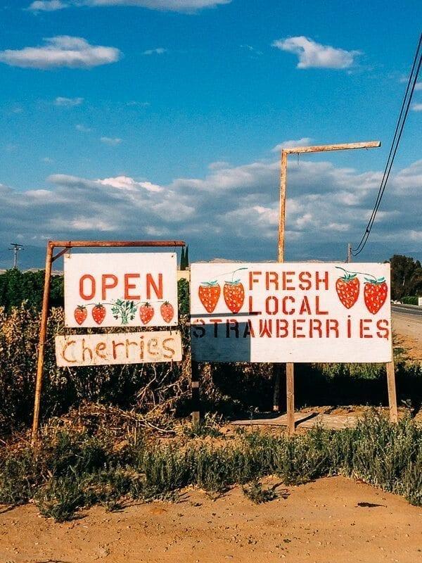Strawberry Farm California