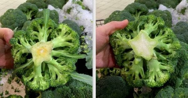 broccoli crowns