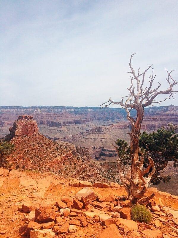 South Kaibab Trail, by thewoksoflife.com