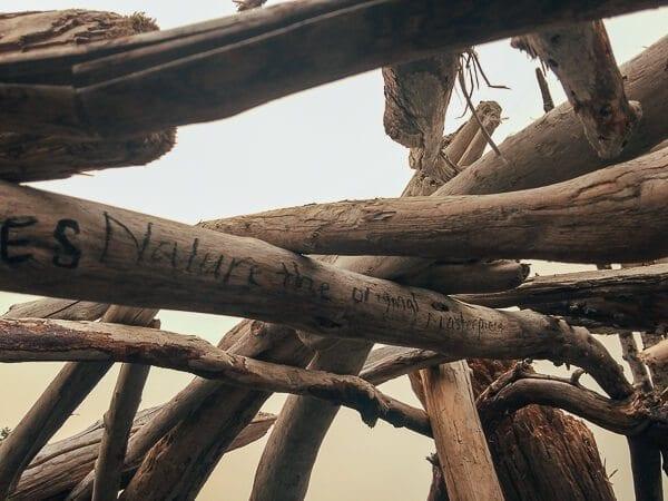 Where the Marmots Roam: Olympic National Park | The Woks of Life