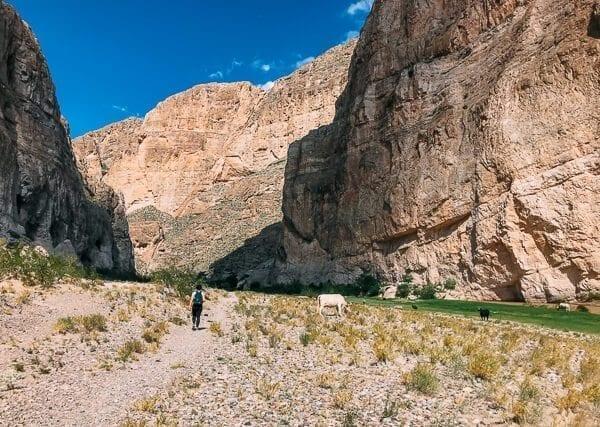 Boquillas Canyon, Big Bend National Park - thewoksoflife.com