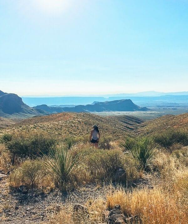 Big Bend National Park, by thewoksoflife.com