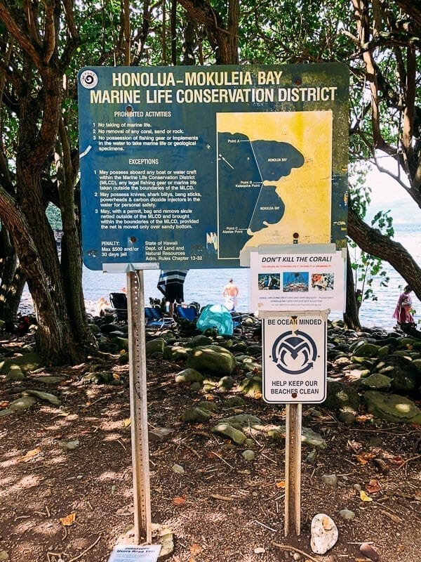 23 Things to Do in Maui, by thewoksoflife.com