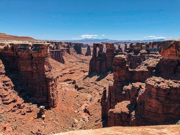 canyon view from White rim trail in Canyonlands by thewoksoflife.com