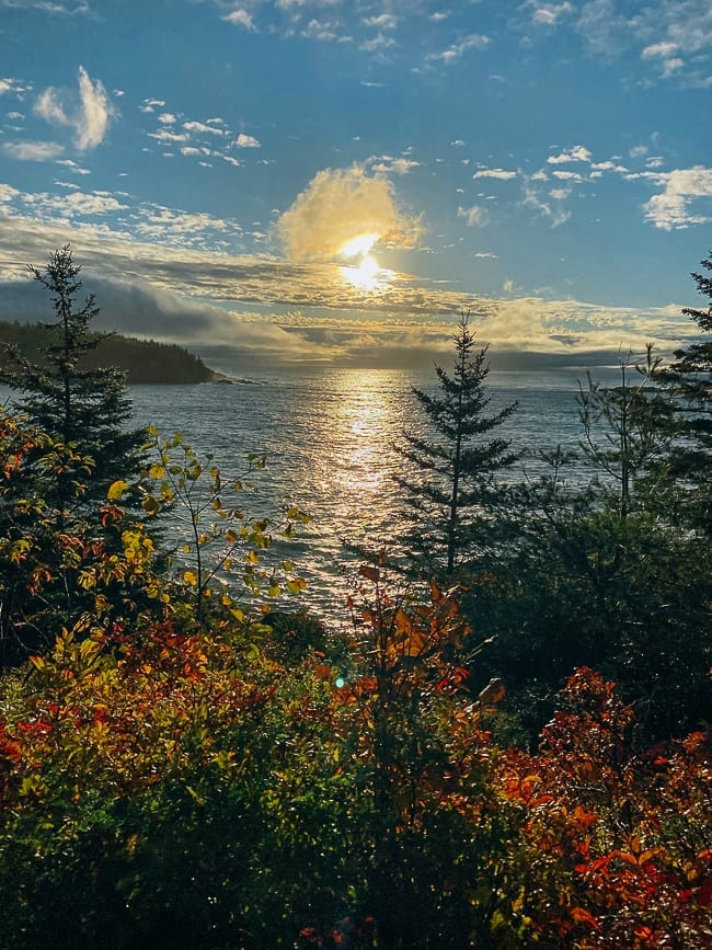 View from Ocean Path in Acadia National Park