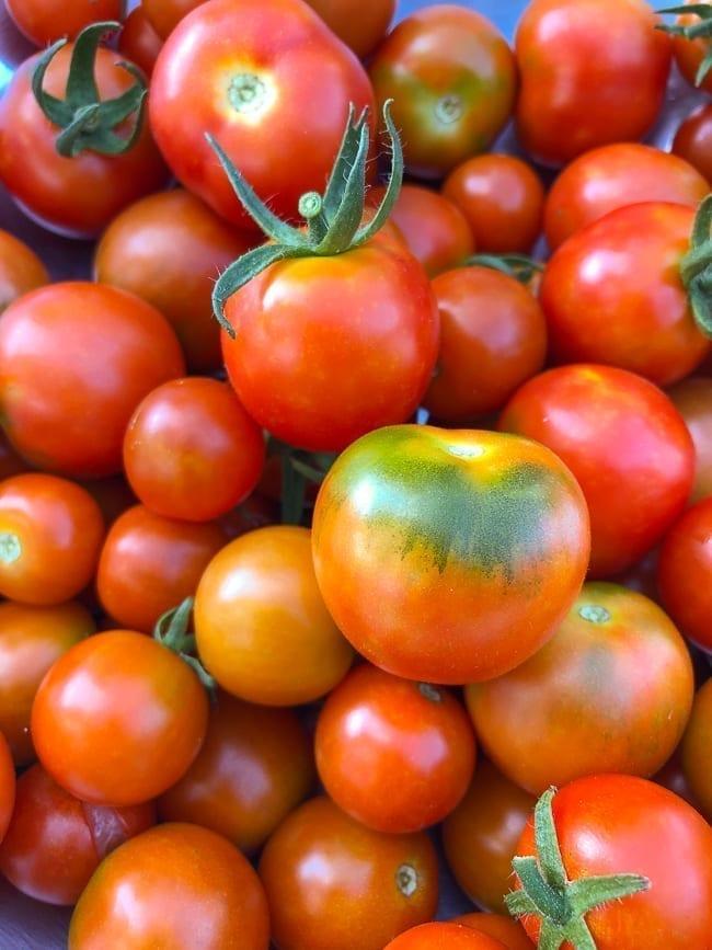 Tomato harvest, thewoksoflife.com