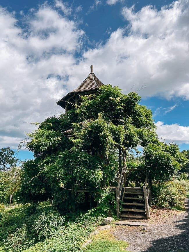 Mohonk Mountain House Wisteria covered tree house, thewoksoflife.com