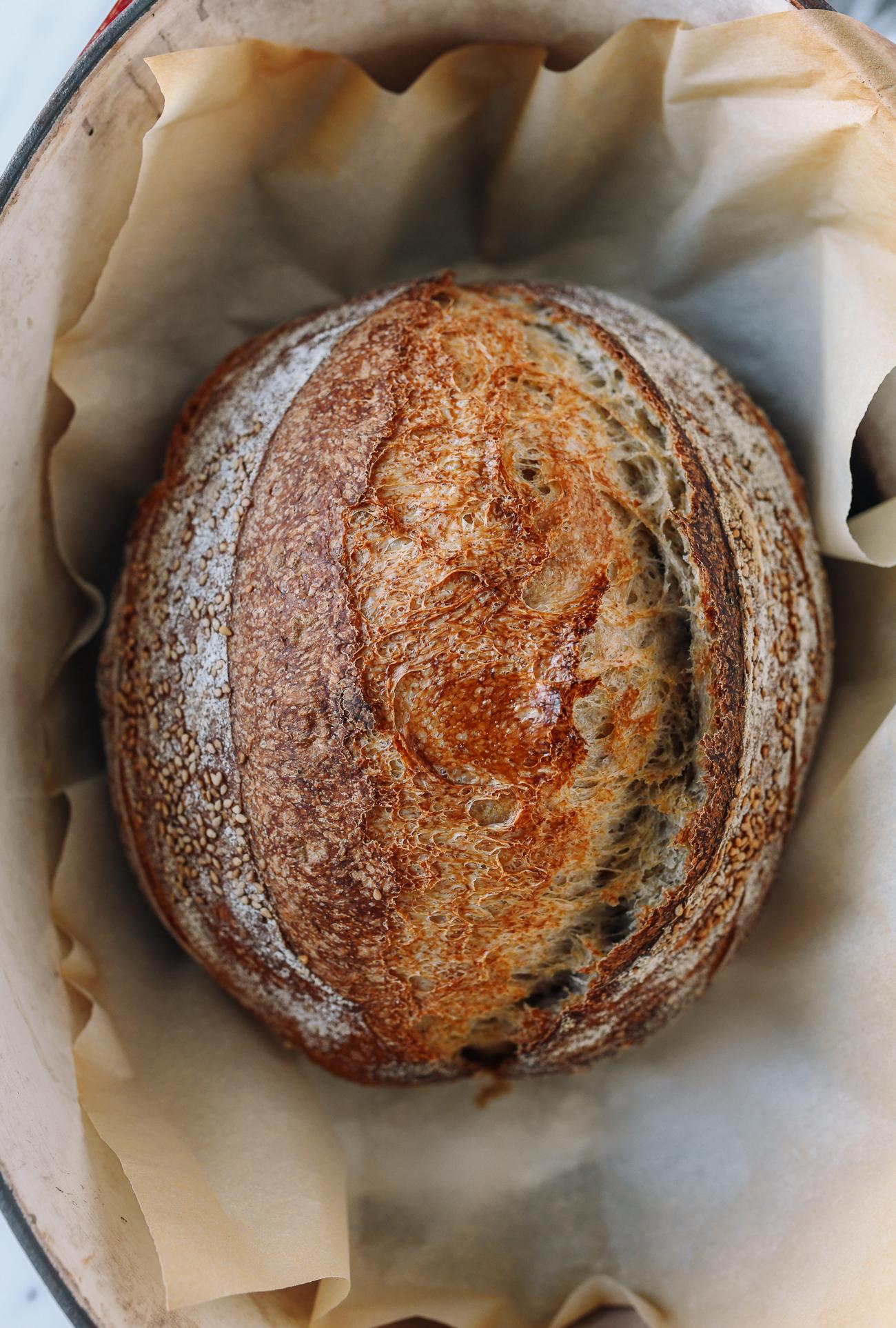 Baked sourdough loaf in Dutch oven
