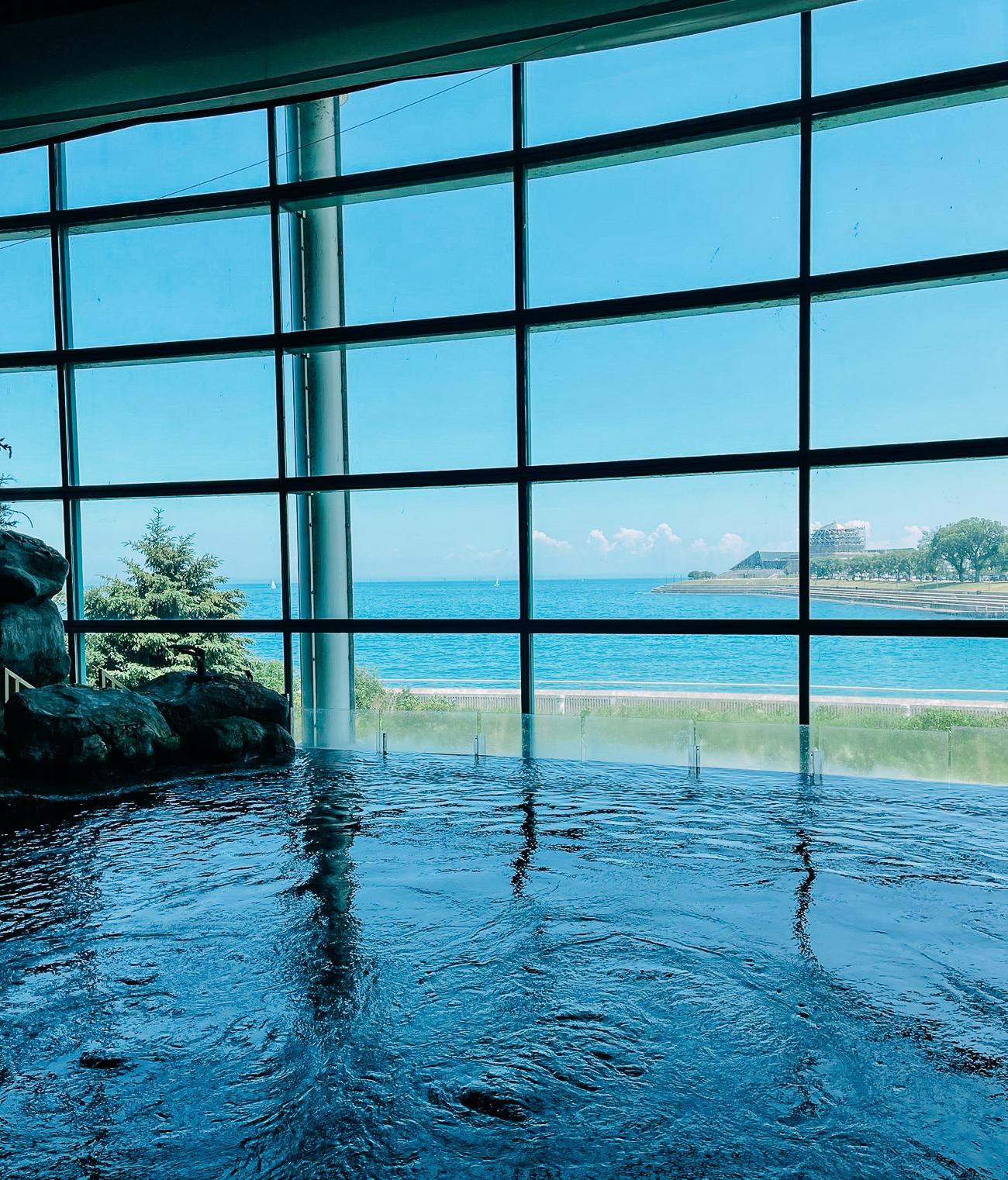 Interior of Shedd Aquarium